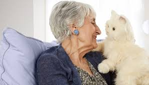 The Cats Meow- Therapy Cats for Older Adults